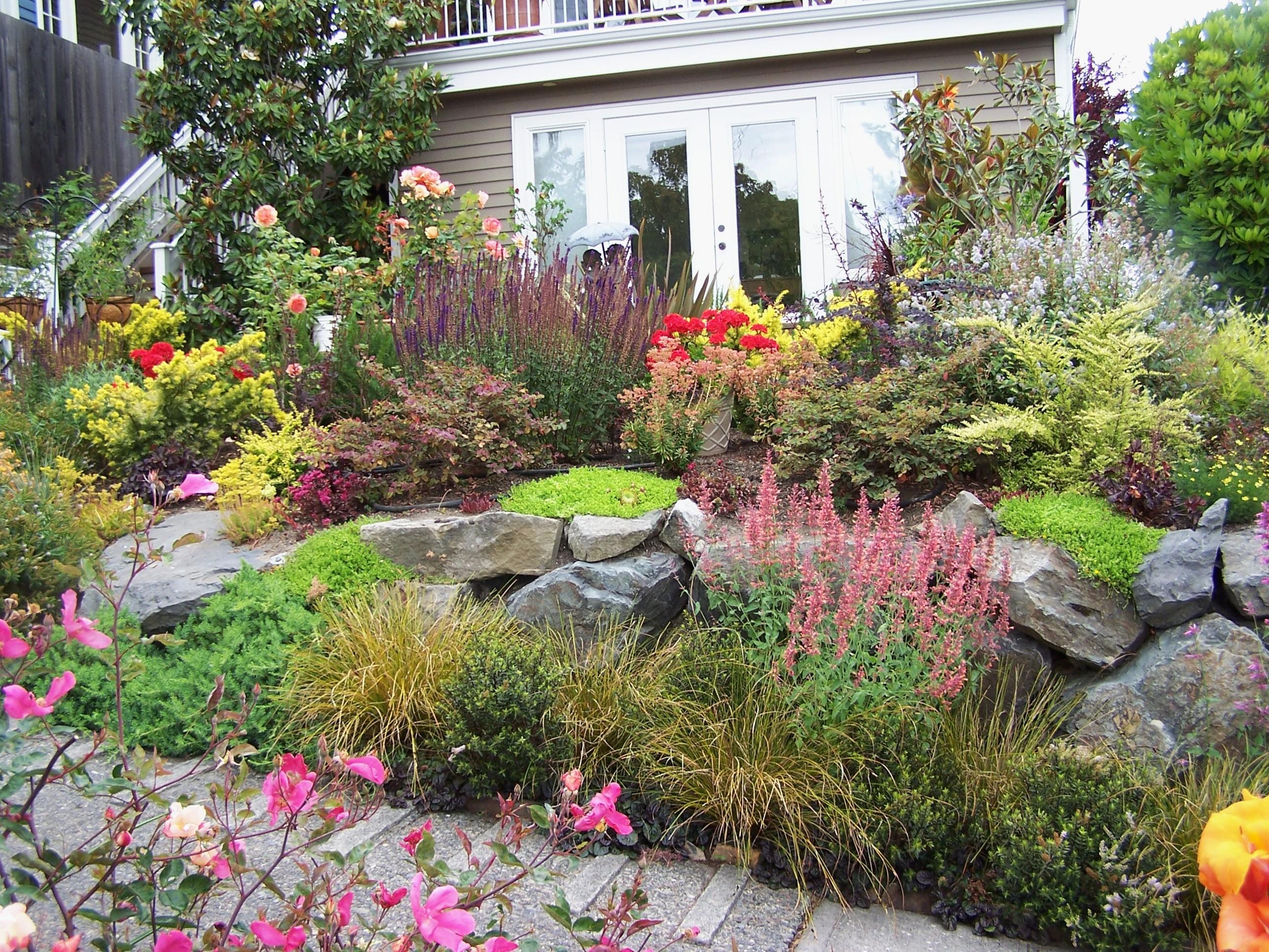 Urban Cottage Garden